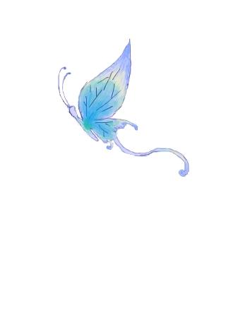 蝴蝶绘图矢量高清图